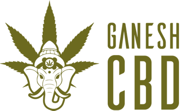 Ganesh CBD Cannabis legale
