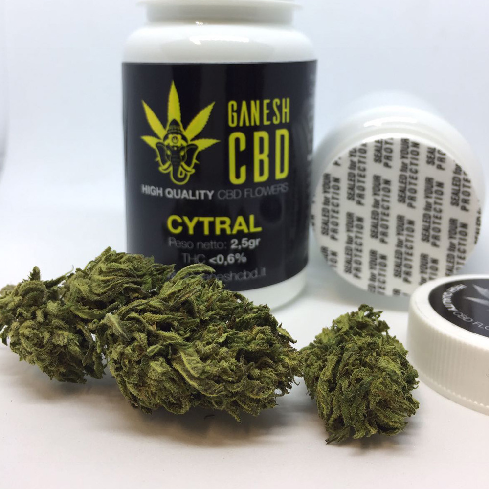 Cannabis legale cytral