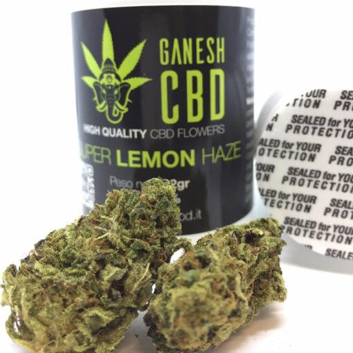 super lemon haze ganesh cbd miglior cannabis legale