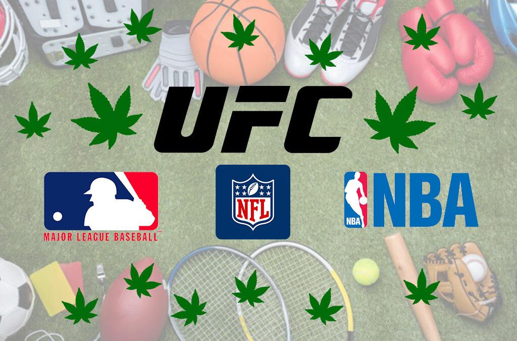 Cannabis e sport, MMA ma non solo