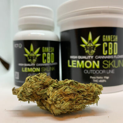 lemon skunk ganesh cbd super lemon haze limonene