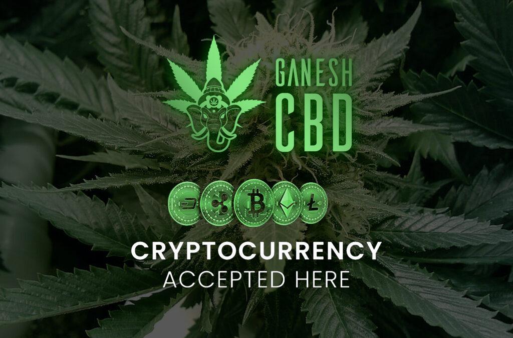 Cannabis e criptovalute il futuro è già qui