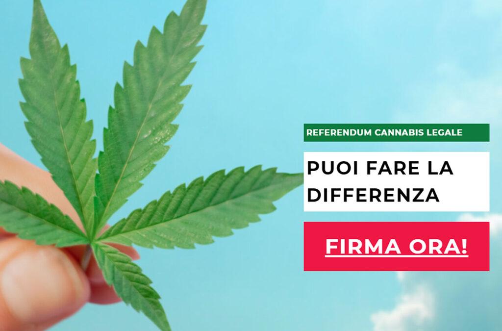 Referendum Cannabis 2021 – Raccolta firme Online